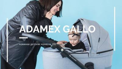 Коляска Adamex Gallo Thermo для новорожденных